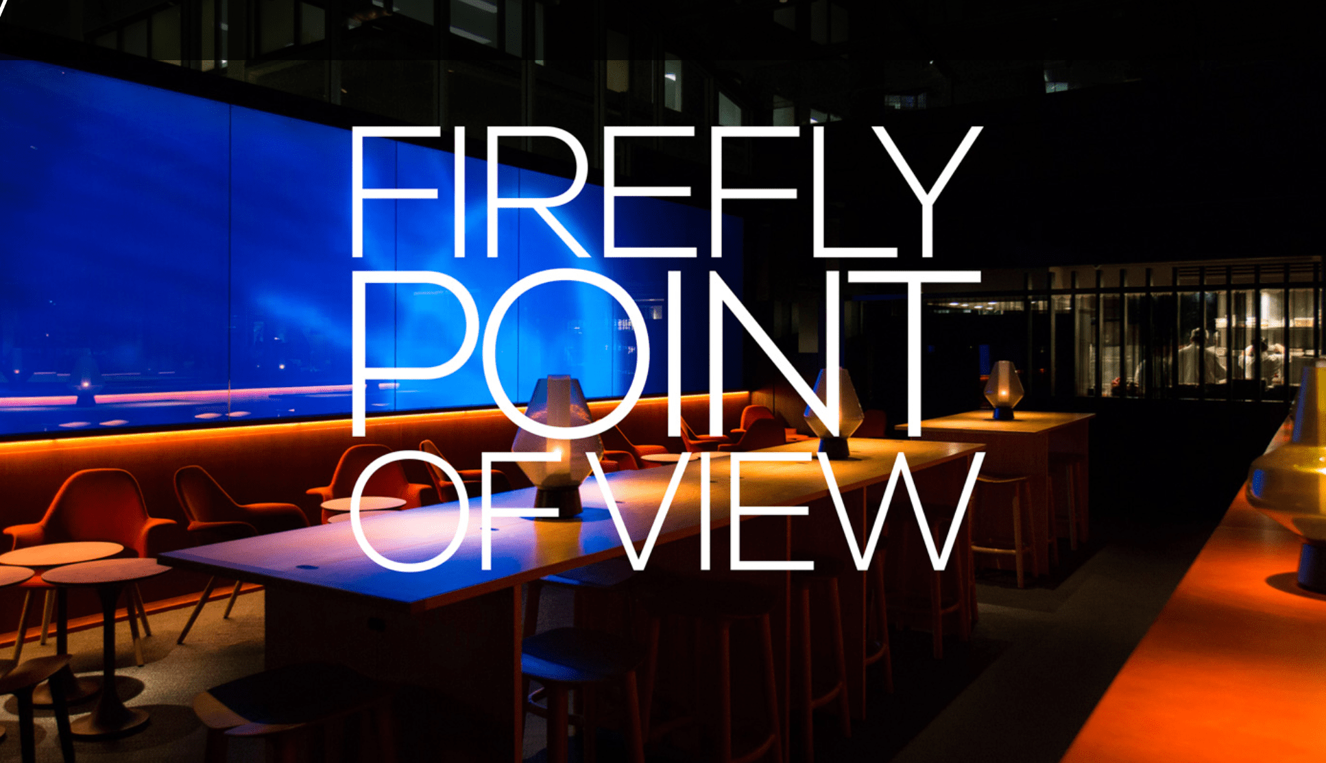 FIREFLY POINT OF VIEW